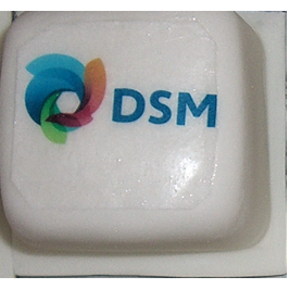Mini Cake Logo DSM Bright Promotion