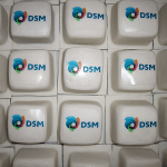 Mini Cake Logo DSM Bright