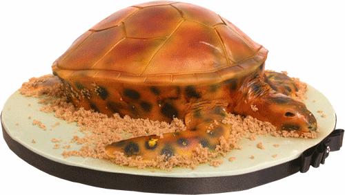 Marine Turtle 3D Birthday Cake london